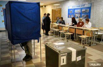 электронное голосование явка избиратели агитация поправки Конституция