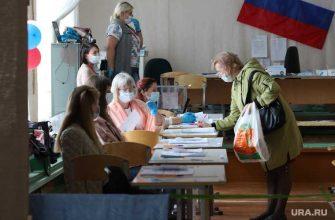 выборы в Курганской области