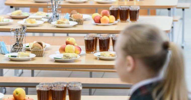 Бесплатное питание индекс несъедаемости попова