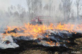 Губернатор Югры Комарова поездка Советский район Югорск лесные пожары