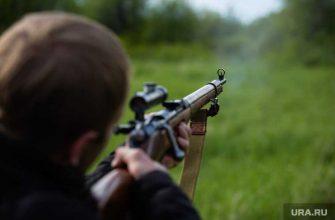 сысерть браконьеры стреляли егеря охотоведы собр стрельба суд