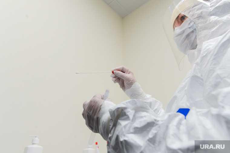срок сдачи теста на коронавирус