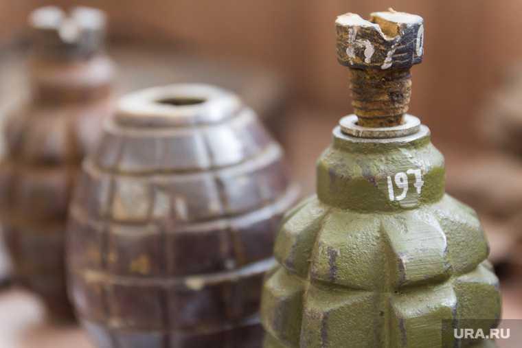 в Курганской области нашли гранату