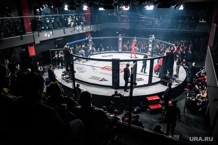 турнир Короли ринга