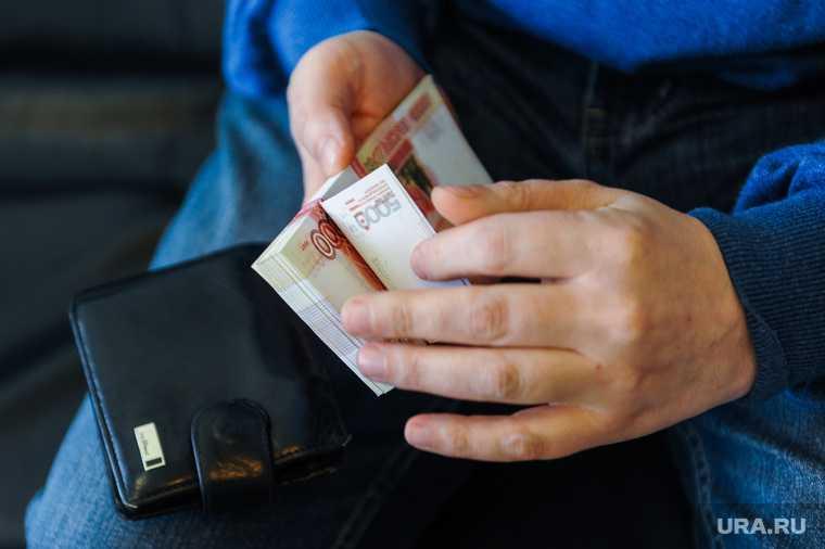 Единая Россия законопроект гарантированный доход должники