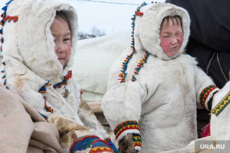 Заслуженные педагоги не поддерживают образовательный проект властей — рыбаки смогут вылавливать ценные виды рыб — Ханты-Мансийск занял первое место в рейтинге. Все самые интересные и важные новости ЯНАО к утру 5 апреля — в обзоре URA.RU: