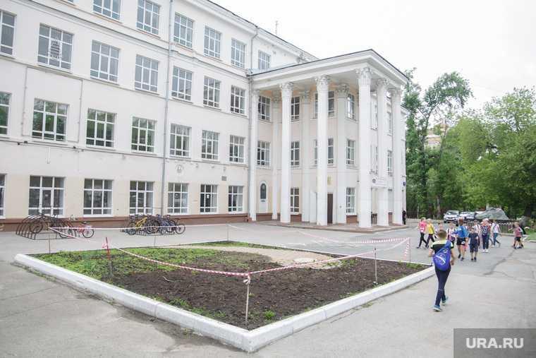поручение губернатора пермского края