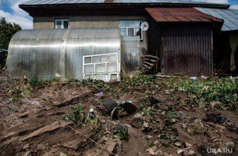 новости хмао дачников топит решение администрации протока долгая речник земляной вал
