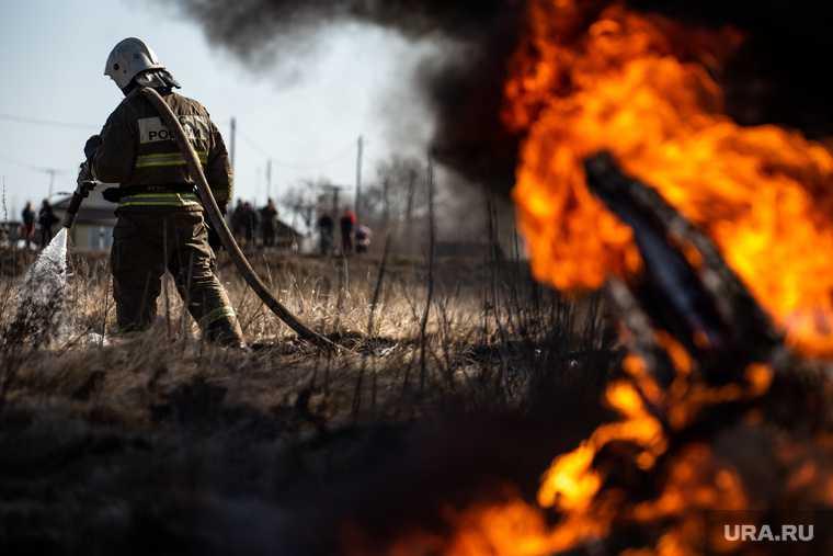 новости хмао противопожарный режим чс 30 градусная жара риск возникновения лесных пожаров