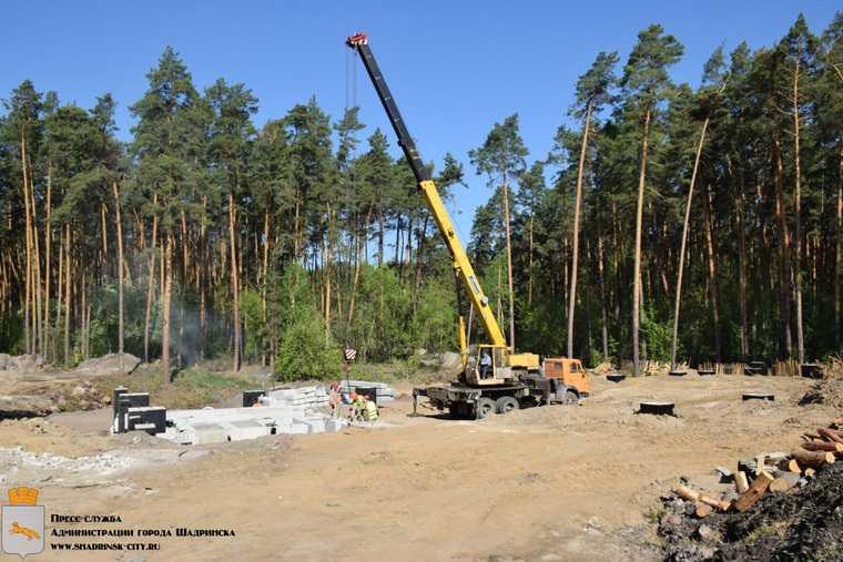 В Шадринске вырубили две тысячи деревьев ради нового водопровода. Фото