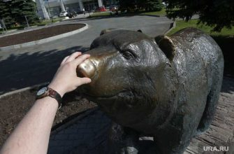 памятник медведю узкая улочка туризм