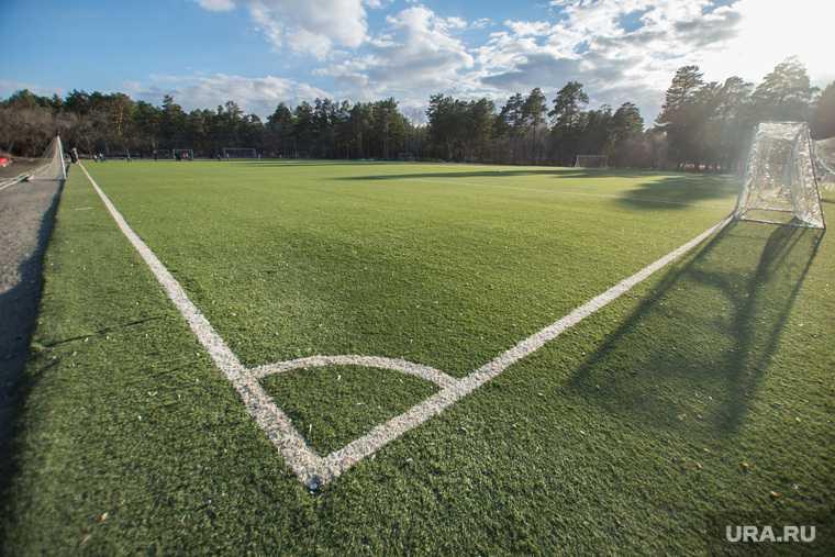 профессиональная футбольная лига