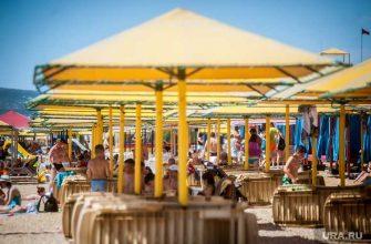 Выборы югорские политики летние отпуска