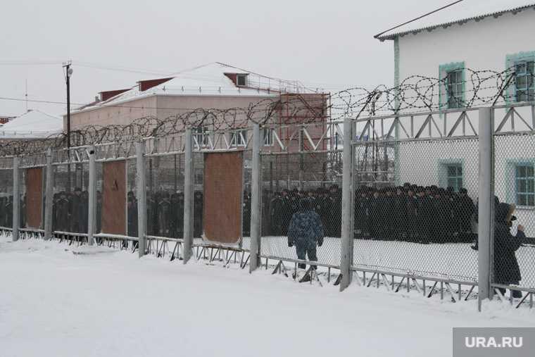 колония заключенный